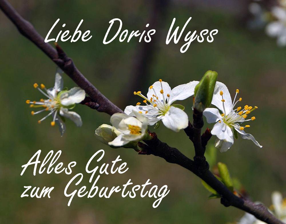 Geb-Doris-Wyss.jpg